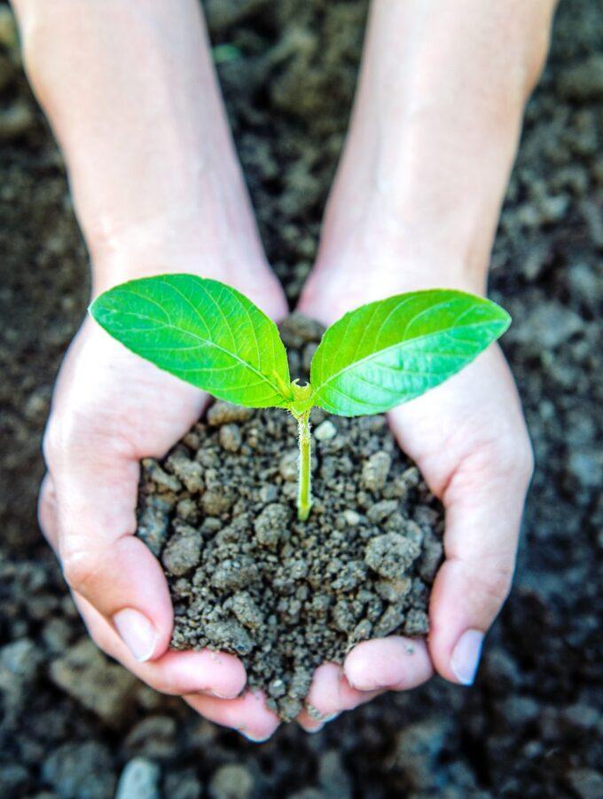 Environmental Responsibility (2)